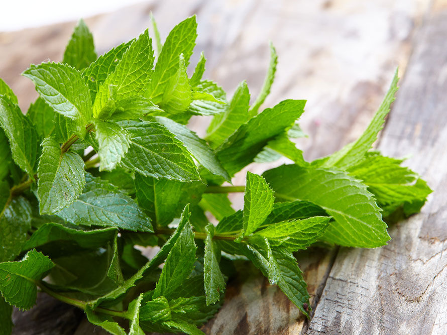 Peppermint Helps In Reducing Acne for fair skin